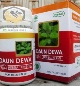 Jual Herbal Daun Dewa HIU