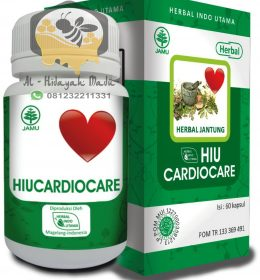 Jual Herbal Cardiocare HIU
