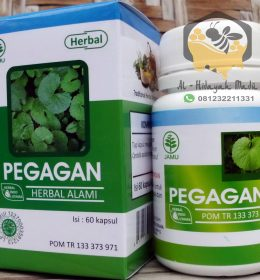 Jual Herbal Pegagan HIU