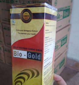Jual Jelly Gamat Bio-Gold